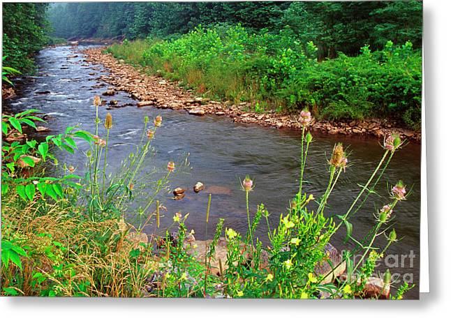Dry Fork River Greeting Card by Thomas R Fletcher