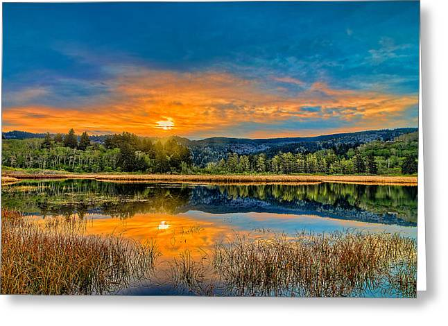 Dry Lagoon Spring Morning Greeting Card
