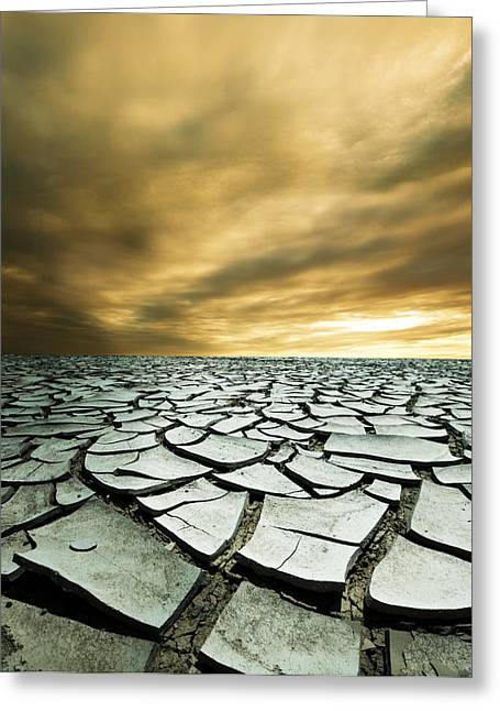 Dry Lowlands Greeting Card