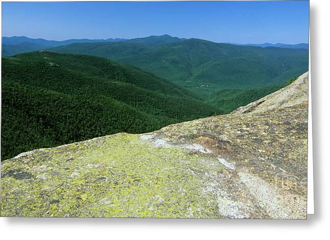 Hike Greeting Cards - Dry River Wilderness - White Mountains New Hampshire Greeting Card by Erin Paul Donovan