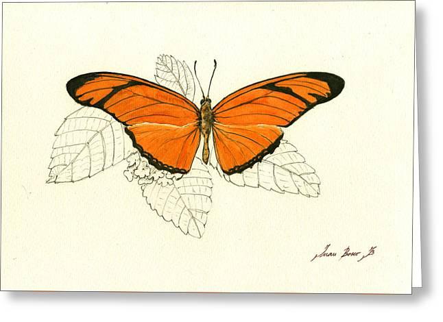 Dryas Iulia, Orange Julia Butterfly Greeting Card