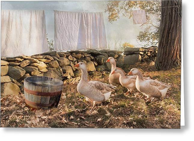 Greeting Card featuring the photograph Drying Out by Robin-Lee Vieira