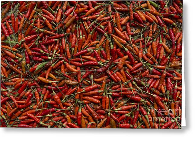 Greeting Card featuring the photograph Drying Red Hot Chili Peppers by Nola Lee Kelsey