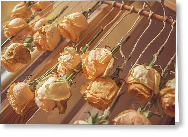 Drying Roses Greeting Card by Thubakabra