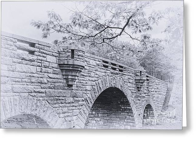 Duck Brook Bridge In Black And White Greeting Card