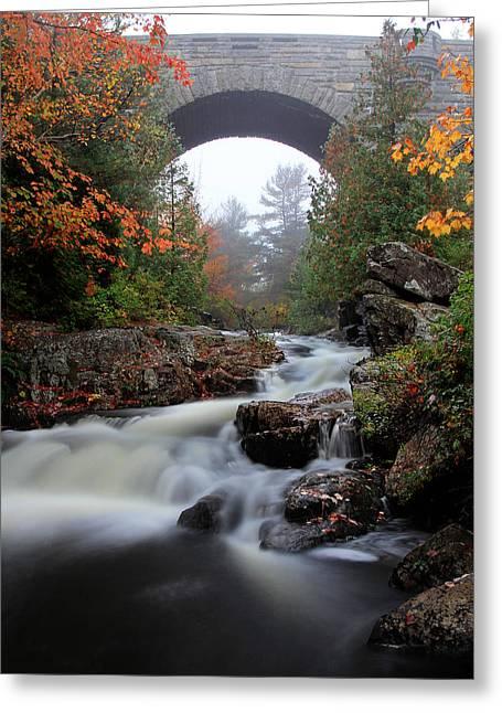 Duck Brook Bridge In The Rain Greeting Card by Dave Sribnik