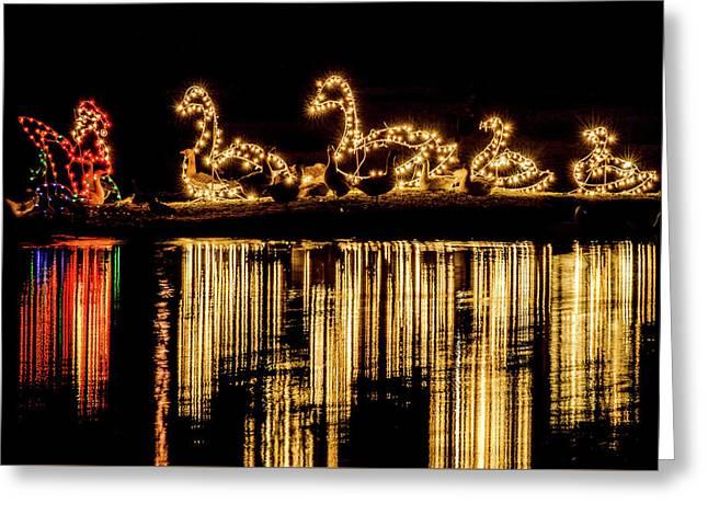 Duck Pond Christmas Greeting Card