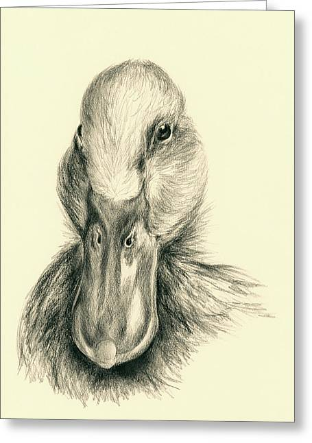 Duck Portrait In Charcoal Greeting Card