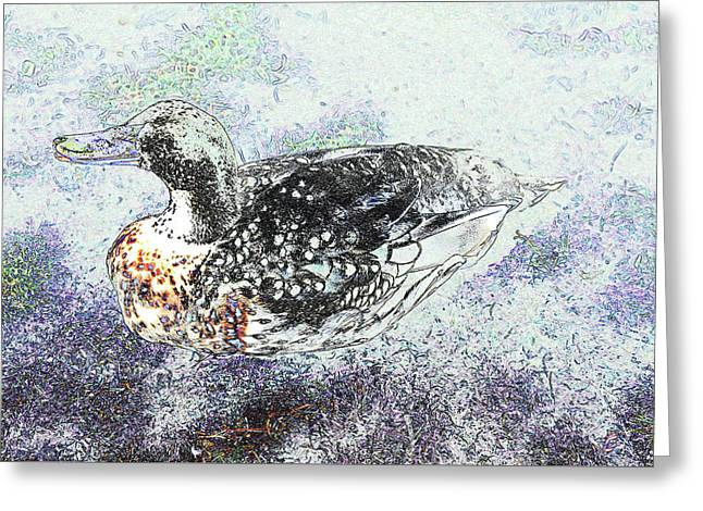 Greeting Card featuring the photograph Duck With Fine Plumage by Nareeta Martin