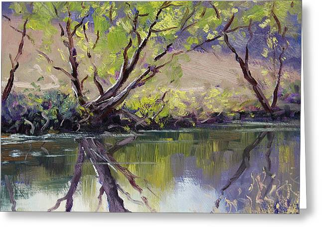 Duckmaloi River Reflections Greeting Card