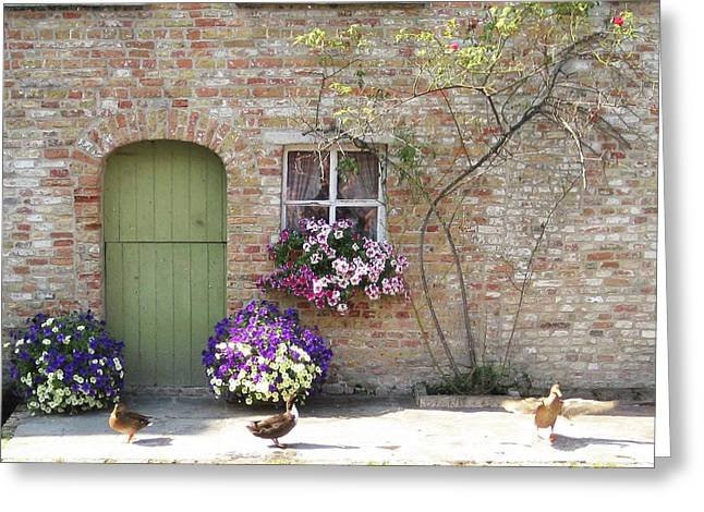 Ducks Along The Canal Greeting Card by David L Griffin