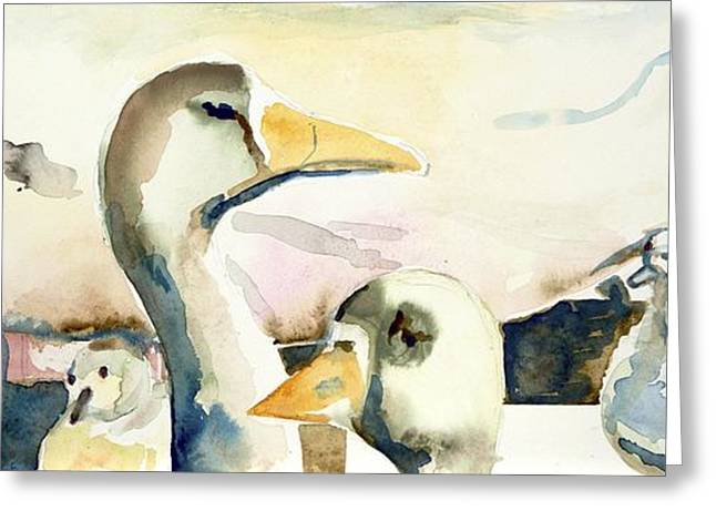 Ducks And Geese Greeting Card