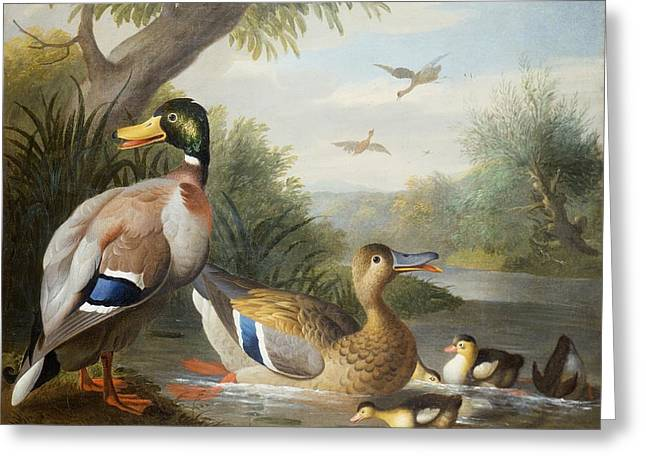 Ducks In A River Landscape Greeting Card
