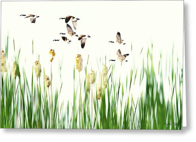 Ducks In Flight - Migration  Greeting Card by Andrea Kollo