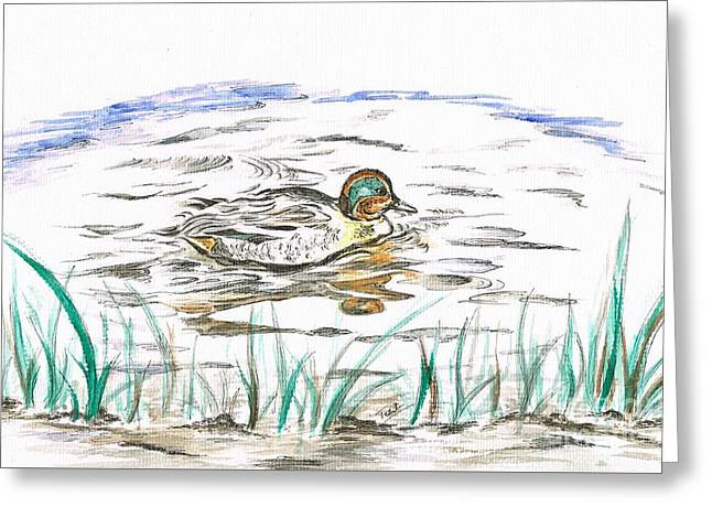 Duck's Reflection  Greeting Card by Teresa White