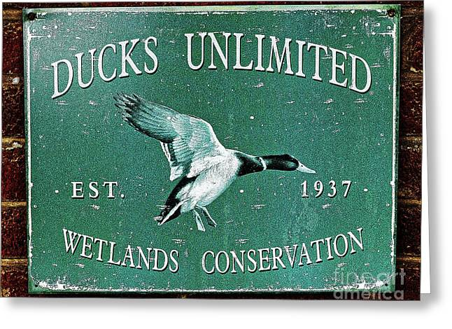 Ducks Unlimited Vintage Sign Greeting Card by Paul Mashburn