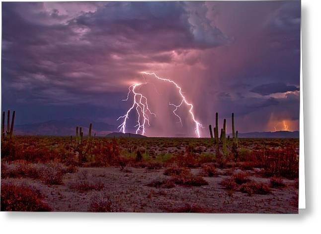 Dueling Storms Greeting Card by Cathy Franklin