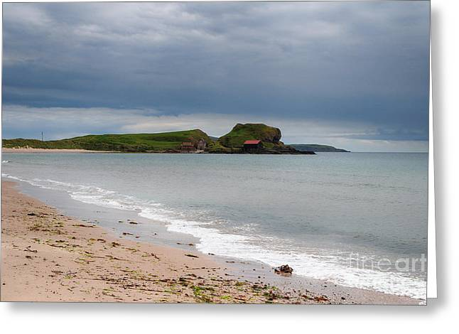 Dunaverty Bay Greeting Card by Nichola Denny