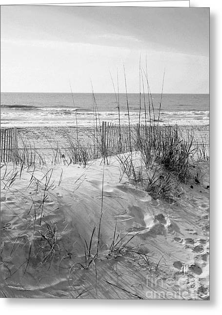 Dune - Black And White Greeting Card