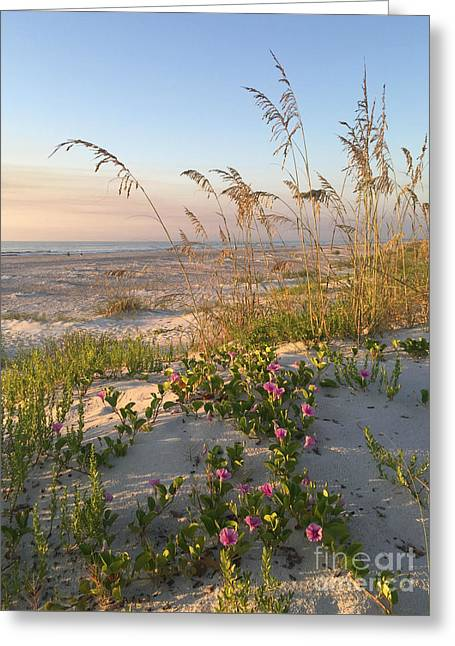 Dune Bliss Greeting Card