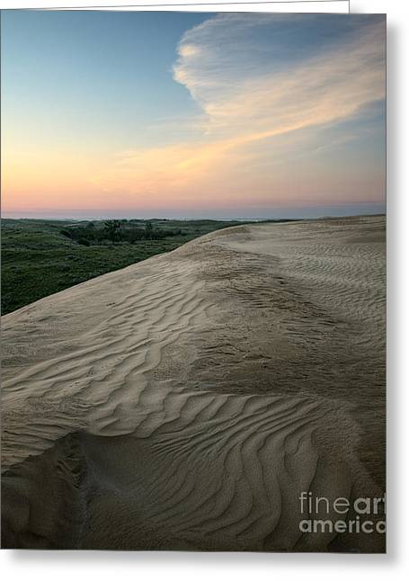 Dune Dawn Greeting Card by Royce Howland