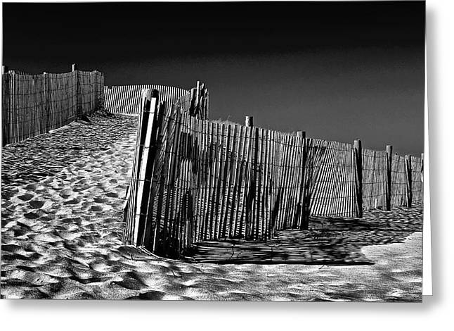 Dune Fence, Black And White Greeting Card