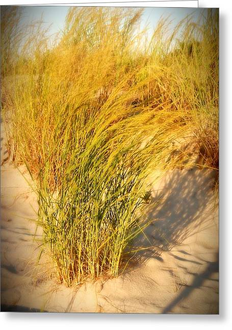 Beach Photos Greeting Cards - Dune Grass II  - Jersey Shore Greeting Card by Angie Tirado