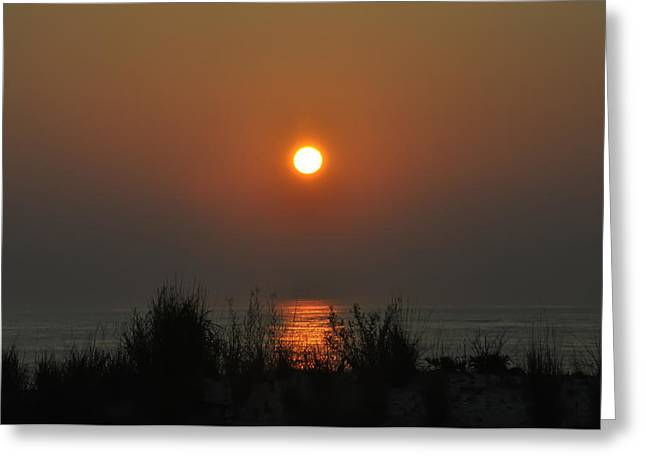 Dune Grass Sunrise Greeting Card by Bill Cannon