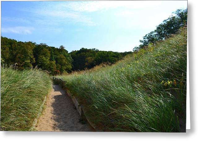 Greeting Card featuring the photograph Dune Path At Laketown by Michelle Calkins