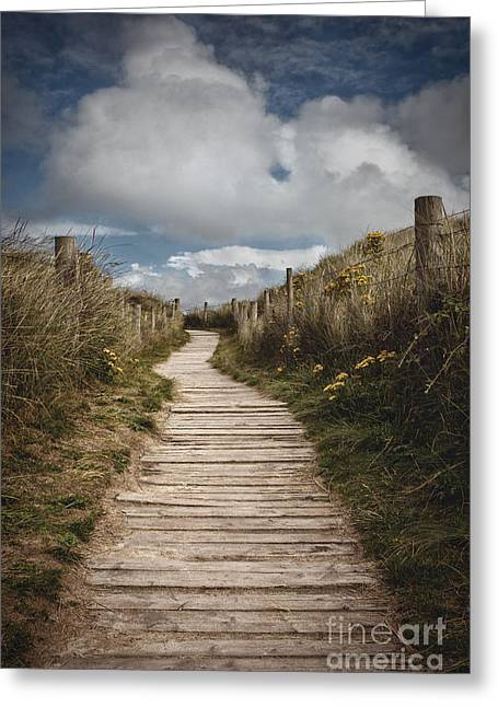 Dune Path Greeting Card
