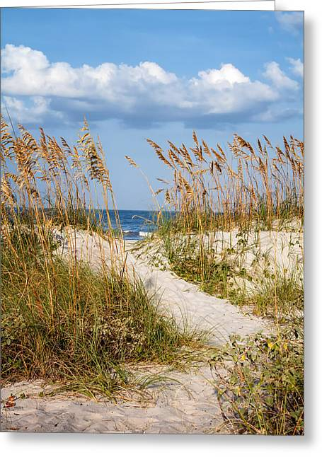 Dune Pathway At The Beach Greeting Card by Dawna  Moore Photography