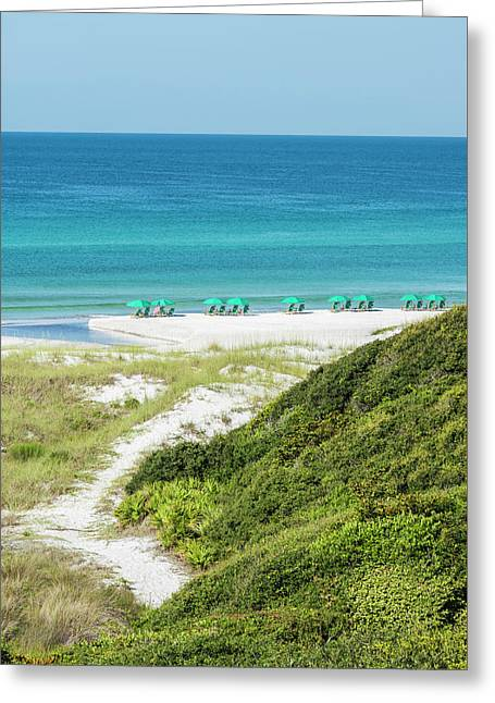 Dune Trail To The Gulf Greeting Card