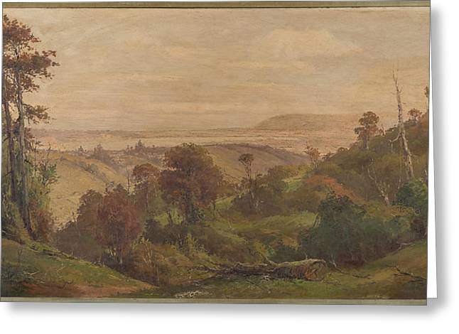 Dunedin From Pine Hill Greeting Card by George Carrington