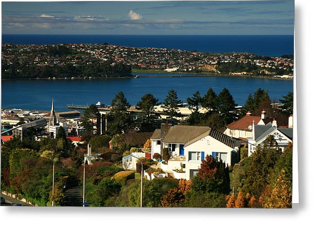 Dunedin Nz View To Andy Bay Greeting Card