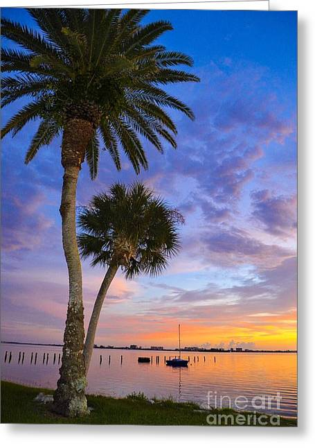 Dunedin Sunset Greeting Card