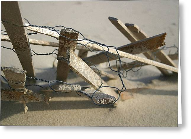 Dunefence Greeting Card by Mary Haber