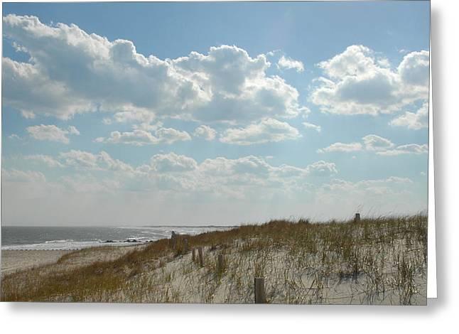 Dunes 32 Greeting Card by Joyce StJames