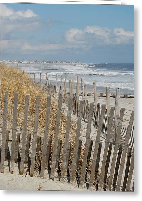 Dunes 35 Greeting Card by Joyce StJames
