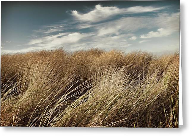 Dunes And Clouds Greeting Card