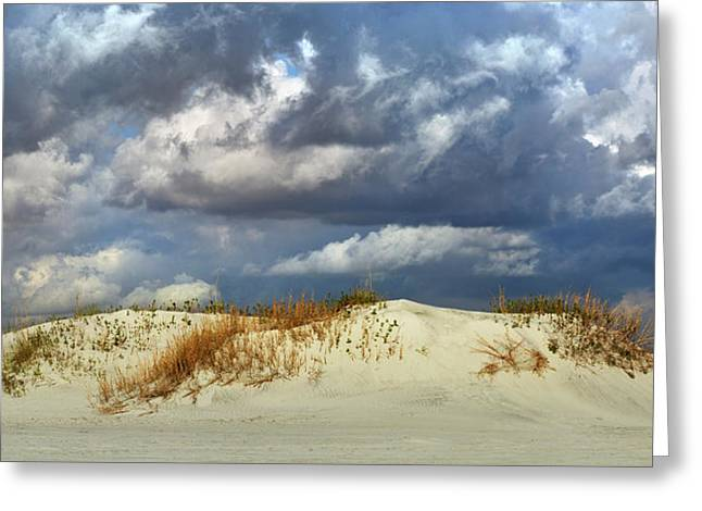 Dunes Day  Greeting Card by Betsy Knapp