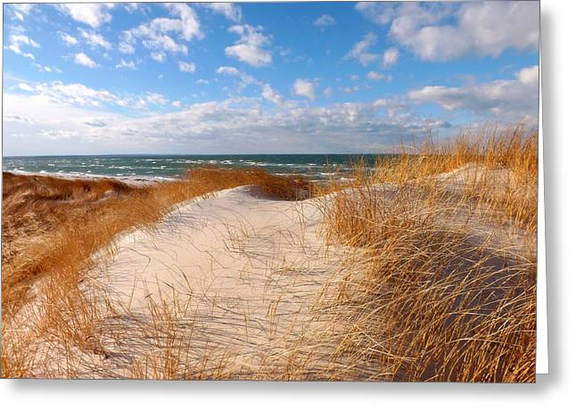 Dunes In Winter Greeting Card