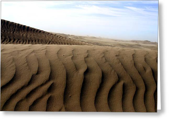 Dunes Of Alaska Greeting Card by Anthony Jones