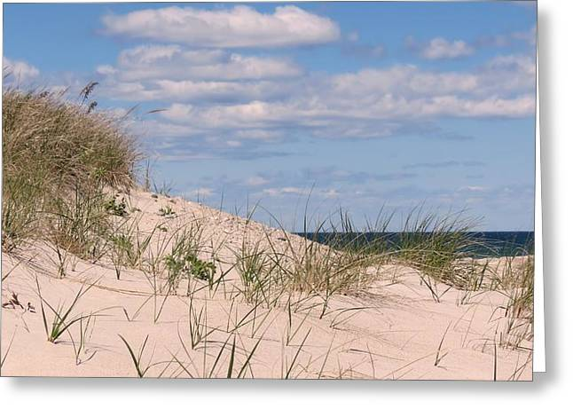 Dunes Of White Horse Beach Greeting Card