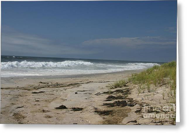 Dunes On Long Island Greeting Card by Dennis Curry