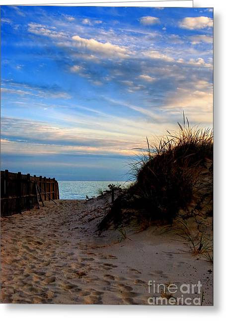 Dunes On The Cape Greeting Card by Joann Vitali