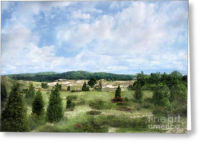 Dunescape Preserved Forever Greeting Card by Kathi Mirto