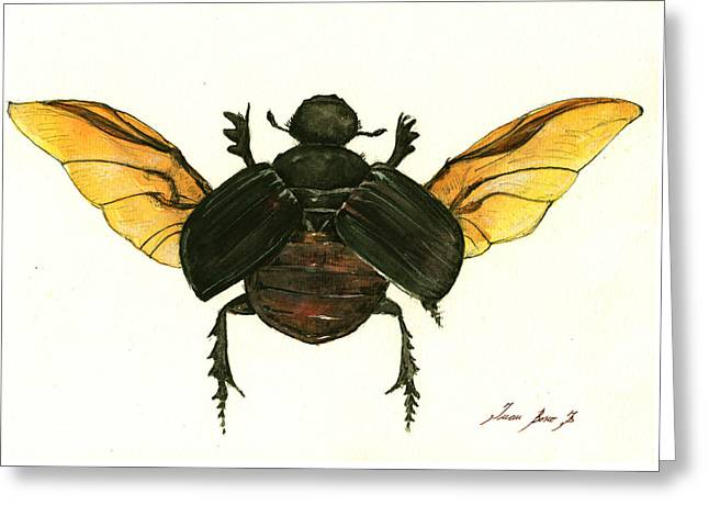 Dung Beetle Greeting Card by Juan Bosco