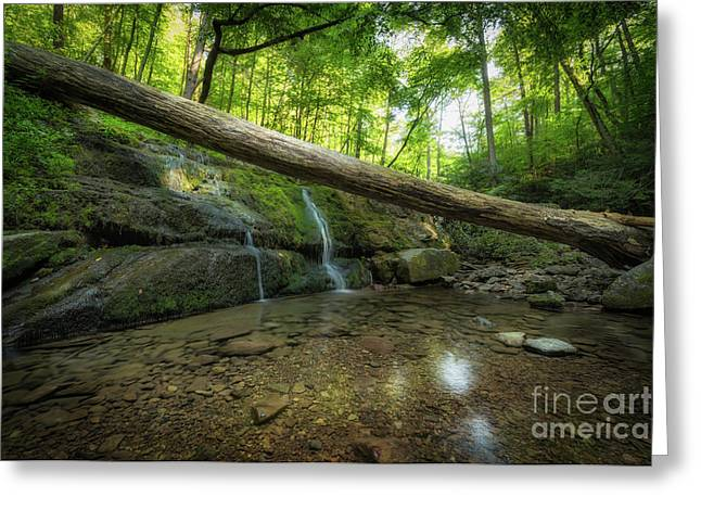 Dunnfield Creek  Greeting Card
