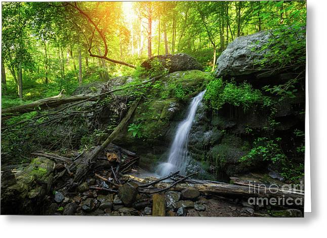 Dunnfield Creek Sunrise  Greeting Card