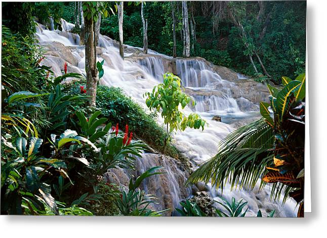 Dunn's River Falls Jamaica Greeting Card